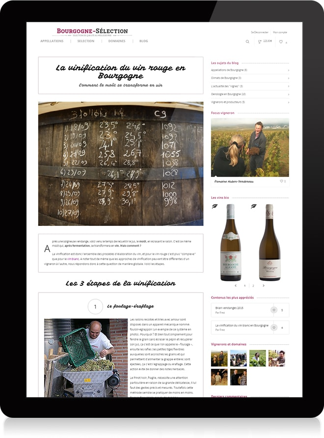 Bourgogne Sélection article 2 - Stratégie digitale - Michael van Houten