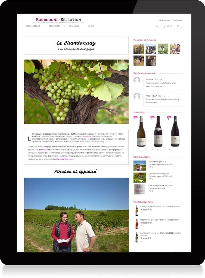 Bourgogne Sélection article - Michael van Houten