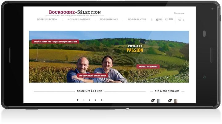Bourgogne Sélection phone 4 - Michael van Houten