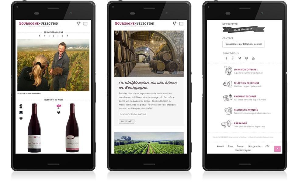 Bourgogne Sélection phone 2 - Michael van Houten