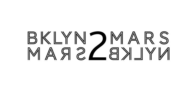Logo Brooklyn to Mars - Michael van Houten