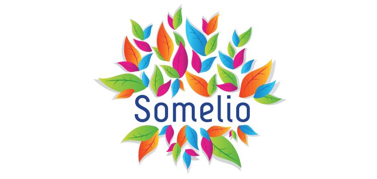 Logo Somelio - Michael van Houten